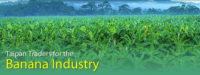 Banana and Fruit Industry Cleaning Products | Taipan Traders
